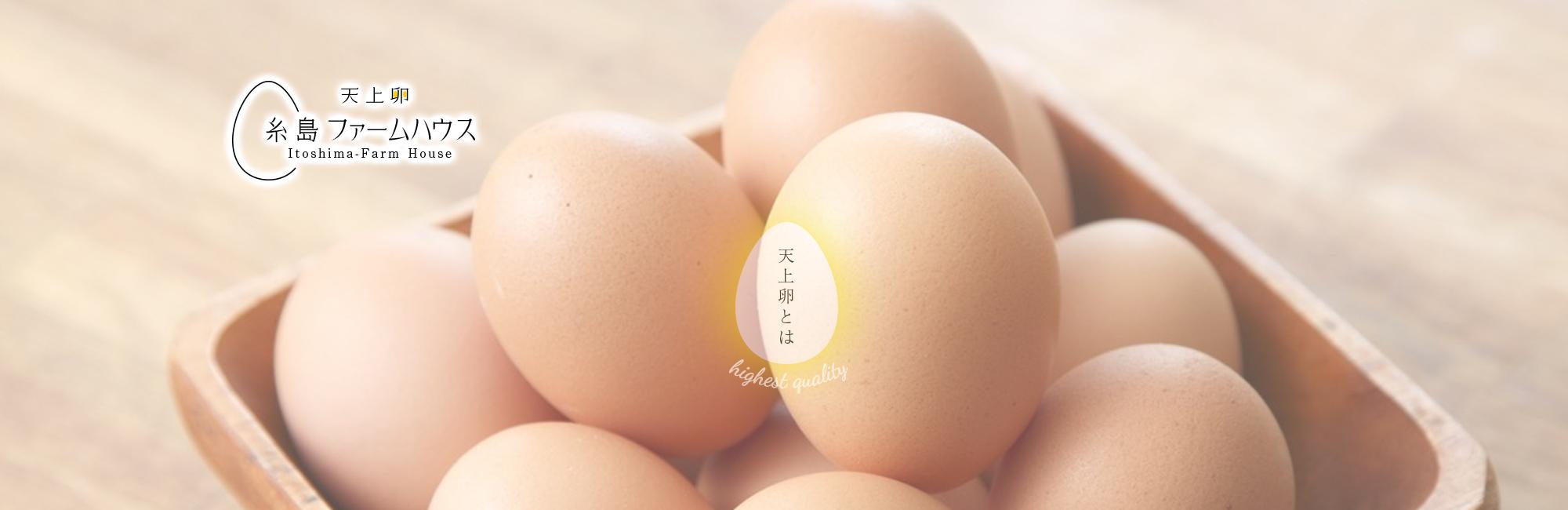 天上卵とは