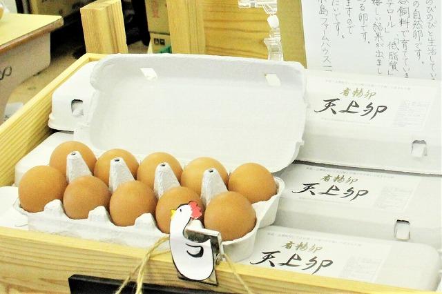天上卵 有精卵