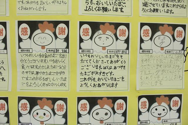 小学生の声5 糸島ファームハウス